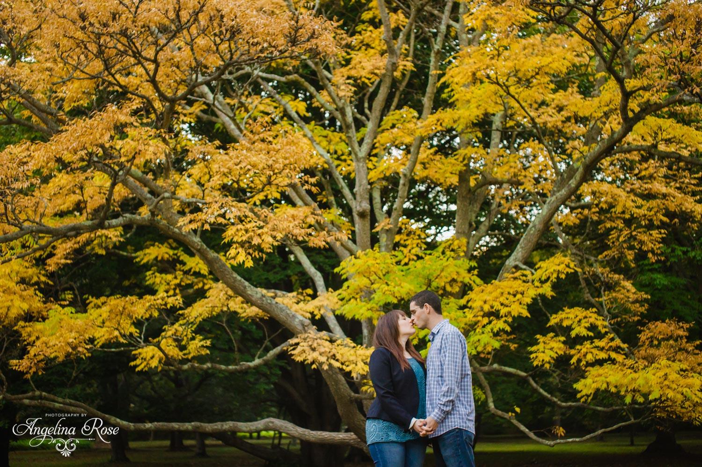 Boston wedding photographer arnold arboretum engagement